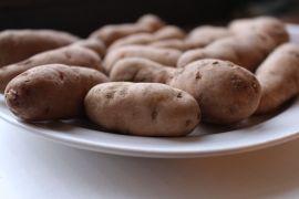 Bam Potato (81)