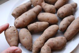 Bam Potato (89)
