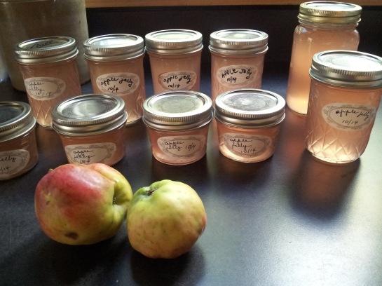 Gaby AppleJelly w Apples